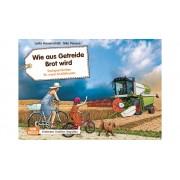 Don Bosco Bildkarten: Wie aus Getreide Brot wird