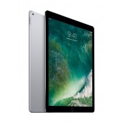 "AL IPAD PRO 13"" 256GB WIFI SPACE GREY"
