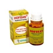 Hofisan