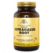 Solgar Astragalus Root 100 kaps