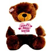 2 feet big brown teddy bear wearing Worlds Best Sister T-shirt