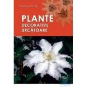 Plante decorative uscatoare - Adrian Margarit