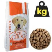 ACTI-CROQ LAMB&RICE 26/12 20kg speciální krmivo pro citlivé psy jehně s rýží