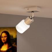 vidaXL Lámpa 1 Üvegbúrás LED Beépített