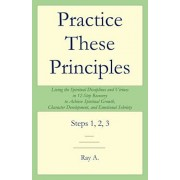 Practice These Principles: Living the Spiritual Disciplines and Virtues in 12-Step Recovery to Achieve Spiritual Growth, Character Development, a, Paperback