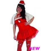Costume Miss Babbo Natale