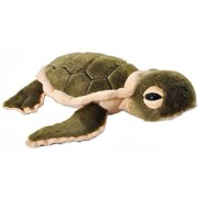 "The Petting Zoo Plush 12"" Green Hatchling Baby Sea Turtle"