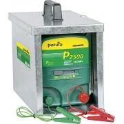 P2500 multifunctioneel apparaat 230V/12V met geopende draagbox