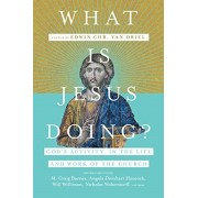 What Is Jesus Doing?: God's Activity in the Life and Work of the Church, Paperback/Edwin Chr Van Driel