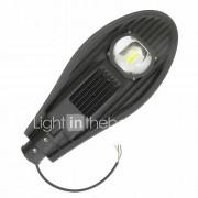 Geïntegreerde LED Hedendaags / Landelijk, Neerwaartse Belichting outdoor Lights Outdoor Lights
