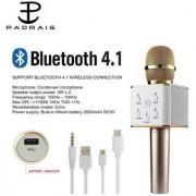 JHP Professional Q7 Karaoke Mic Bluetooth Speaker Microphone Sing Recording