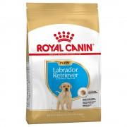 Royal Canin Labrador Retriever Puppy / Junior - Pack % - 2 x 12 kg