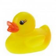 Kis kacsa fürdető játék