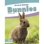 Bunnies/Kelsey Jopp