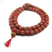 5 Mukhi Rudraksha Kantha Mala