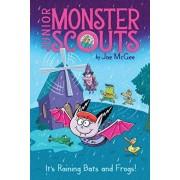 It's Raining Bats and Frogs!, Hardcover/Joe McGee