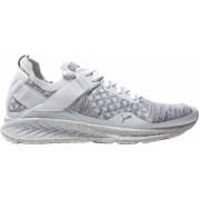 Puma sneakers Ignite Evoknit HyperNature heren wit maat 41