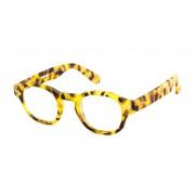 Read Loop Leesbril Readloop Everglades 2615-04 havanna blond +2.00