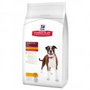 20% kedvezmény: Hill's Science Plan Adult Canine speciális szükségletekre - 1+ Performance Medium csirke (12 kg)