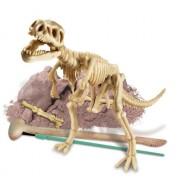 Toysmith Dig-A-Dino Tyrannosaurus Rex