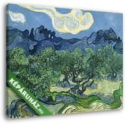 Vincent Van Gogh: Olajfák, az Alpilles-sel a háttérben (30x25 cm, Vászonkép )