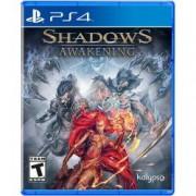 Joc Shadows Awakening pentru PlayStation 4