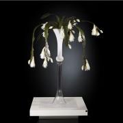 Aranjament floral VASE PRINCESS, 160cm
