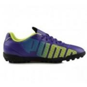 Puma evoSPEED 5.3 TT Football Shoes(Blue)