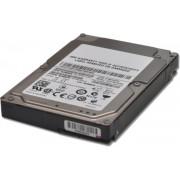 IBM 81Y9670 - interne harde schijf - 300 GB