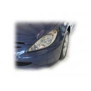 Pleoape Peugeot 307 3RHY/3RFN/3NFU/3RHS/3KFU/2RFK 4.2001 - 6.2005