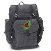 Ladybug LARGE Backpack Canvas Ladybugs School or Travel Bag