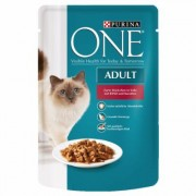 Set Risparmio! Purina ONE 12 x 85 g - Coat & Hairball con Pollo e Fagiolini
