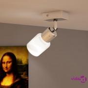 vidaXL Stropna lampa LED 1 stakleni abažur