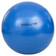 "BR Speelbal Jolly Mega Ball 30"" - blue - Size: ONESIZE"