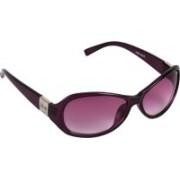 Pede Milan Cat-eye Sunglasses(Pink)