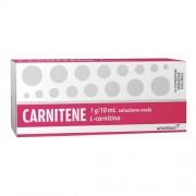 Alfasigma Spa Carnitene Os 10fl 1g Monodose