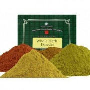 Lymeherbs Package Core Protocol