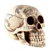 decorațiune alcool cranii - D1500D5