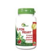 Lyon Heart Star International 50tb