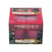 Yankee Candle Tropical Jungle duft-teelichter 12 x 9,8 g 117,6 g
