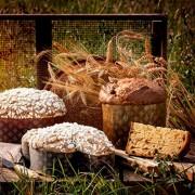 CEREAL'EAT 10 Kg. Per Panettone Colombe e Lievitati ai Cereali. Irca