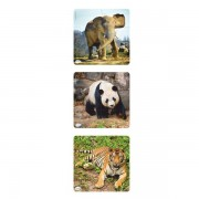 Set 3 puzzle progresive Animale