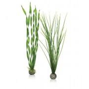 biOrb vysoká rostlina set zelená