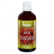 Apa de trandafiri 100ml Adams