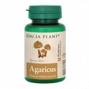 Agaricus 60 comprimate Dacia Plant