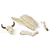Schleich Bones Accessory Play Set