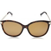 Kenneth Cole Oval Sunglasses(Blue, Brown)