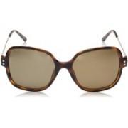 Polaroid Over-sized Sunglasses(Brown)