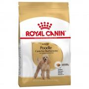 Royal Canin Breed 7,5kg Poodle Adult Royal Canin Breed Hundfoder