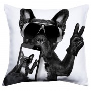 Perna Cool Dog 40x40